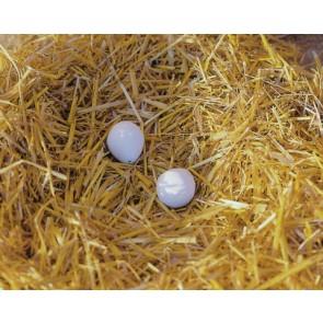 Oeufs de poule en argile par 2 en coque