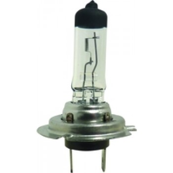 AMPOULE H7 12V 55W boite