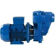 Pompe Renson av moteur élect 220v. mono