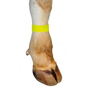 Bracelet velcro jaune 10 pces