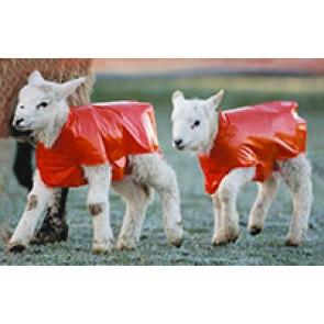 Couverture agneau rouge