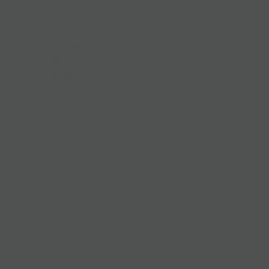AEROSOL RAL 7043-GRIS