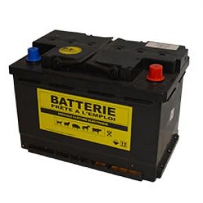 BATTERIE DE CLOTURE  ELECTRIQUE 12V 65A   245X175X190 BORNE+D